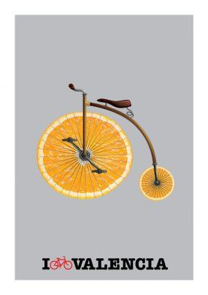 Bicicleta antigua / Old bike